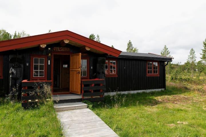 Liten hytte i Hånesåsen