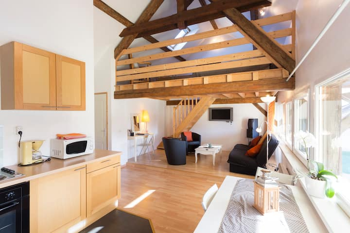 The Loft close to charming Colmar