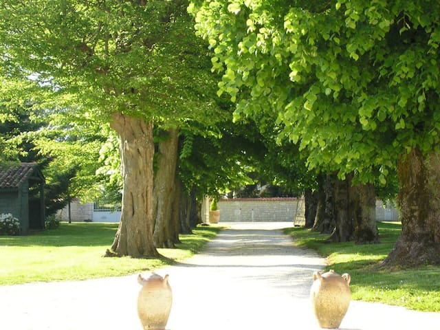 Maison a l'ombre des tilleuls. - Saint-Martial-de-Vitaterne - Huis