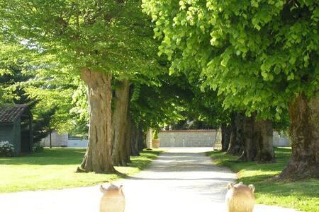 Maison a l'ombre des tilleuls. - Saint-Martial-de-Vitaterne - 一軒家