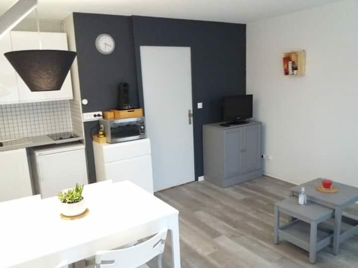 Studio  Villard de Lans Residence La croix Margot