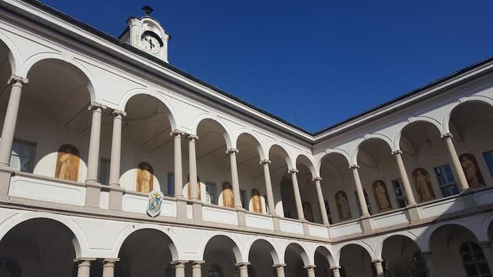 Camera Doppia con Letti Singoli in Villa Terzaghi