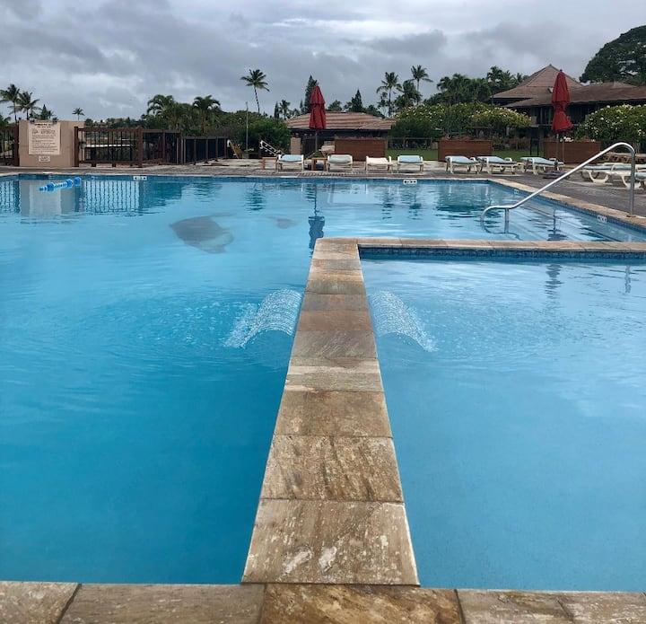 Sunny Kaanapali-Maui Eldorado Resort-G204