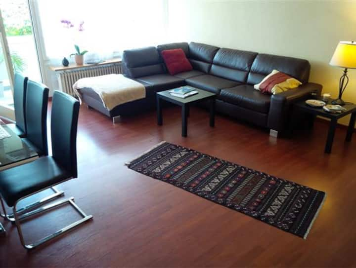 Beautiful flat with 3 bedrooms (2)