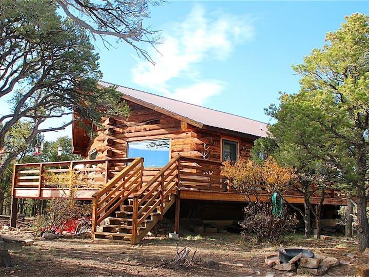 Family Friendly Log Home in San Juan Mountains