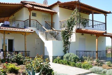 Sunny apartment with mountain views - Nea Plagia