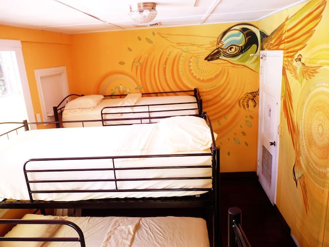Hostel Casa Nativa Panama / 6 Bed Mixed Dormitory