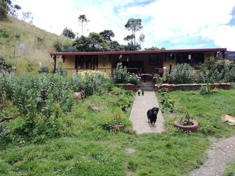 Hostel Ferme ShambaLa