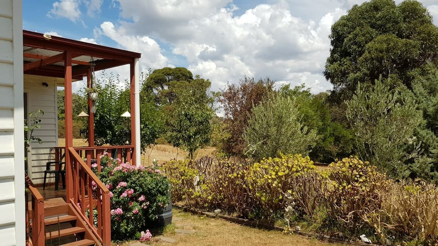 Bushland  Wonder
