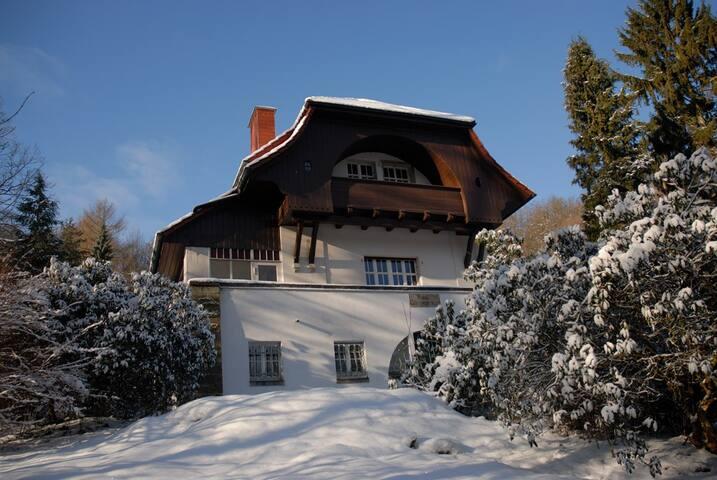 Villa Sängerstein - Eisenach - Condominium