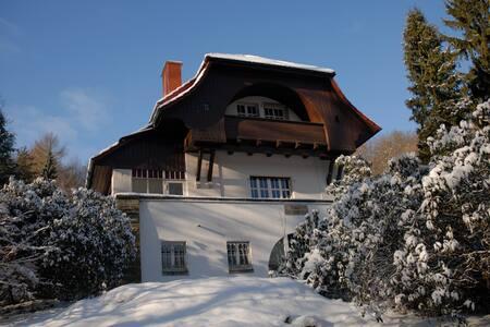 Villa Sängerstein - Eisenach - 公寓
