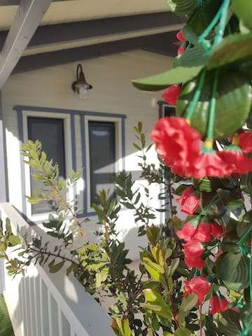Yaels house - הבית של יעל