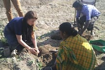 Guests learning how to plant a tea bush.