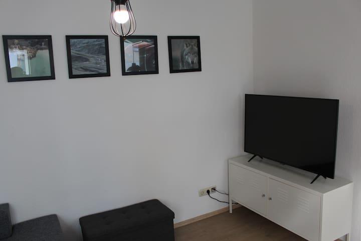 Fernsehereinheit / TV area
