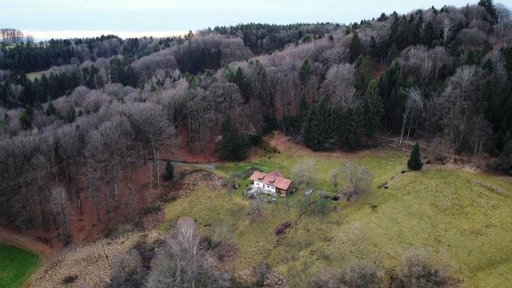 Ferienhaus in Alleinlage im bayerischen Wald