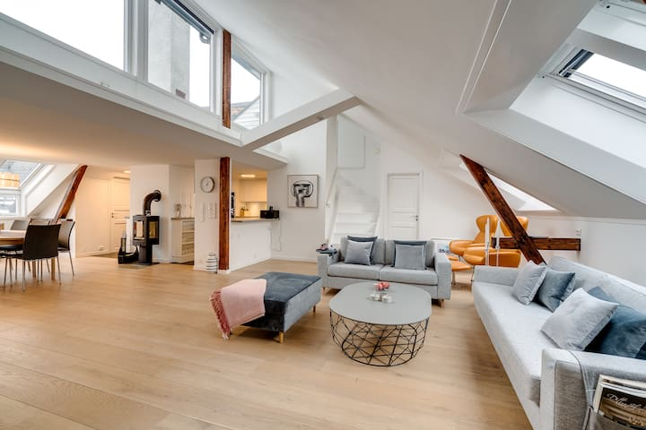 Large Lovely Penthouse, In the heart of Oslo
