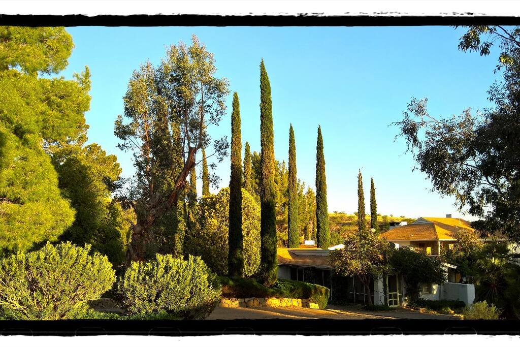 The grounds of the Oak Bar Ranch