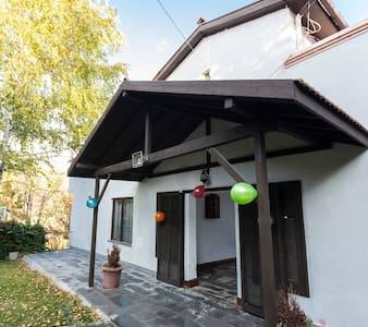 Huge Villa with Swimming Pool   Ankara