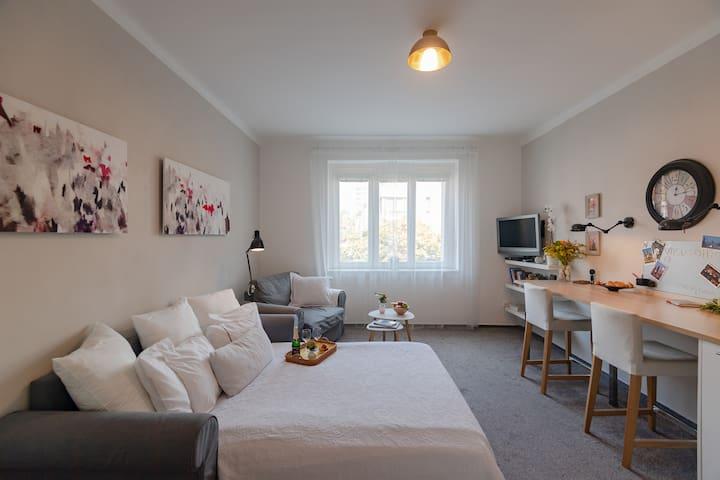 Discover Prague - amazing cosy studio in Podolí