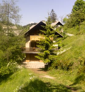 Spacious house surrounded by animals - Črni Vrh - 一軒家