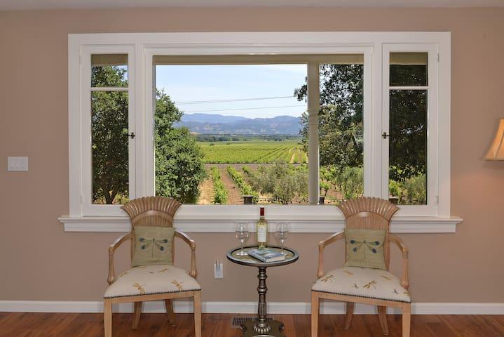 Trentadue Estate View-Vineyard View - Geyserville
