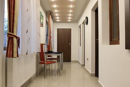 Schwartz Apartment - Cluj-Napoca - Wohnung