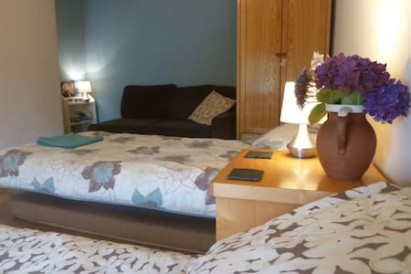 Lovely twin/triple room on the edge of Snowdonia