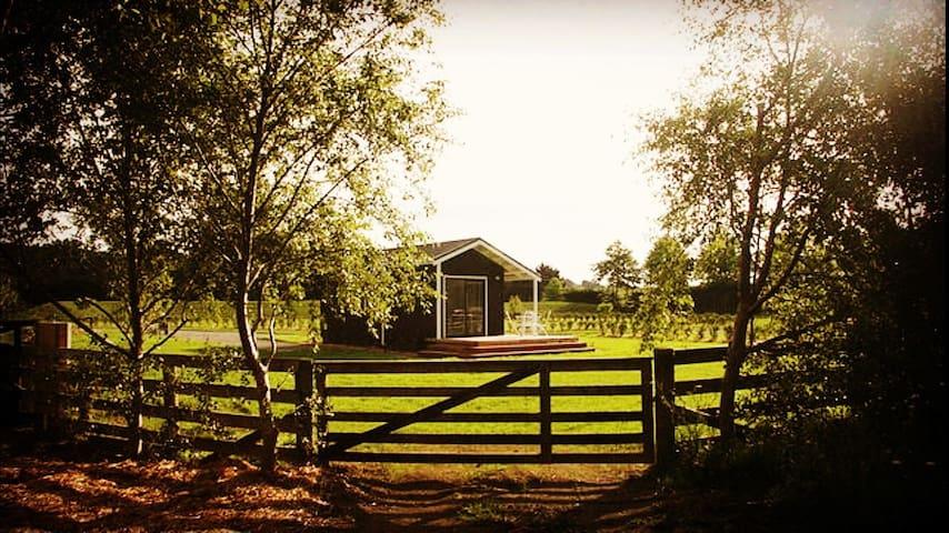 Beauregard Matakana Accommodation - Warkworth - Chalet