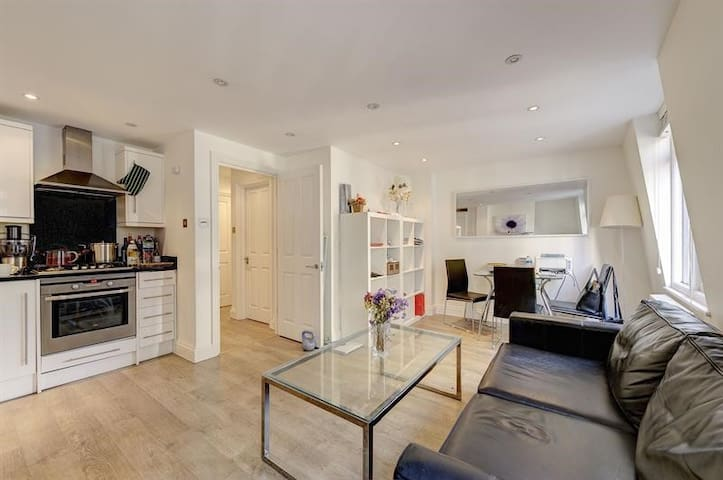 Fabulous Apartment in London Close to Big Ben