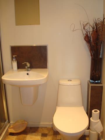 Private WC and wash basin and shower
