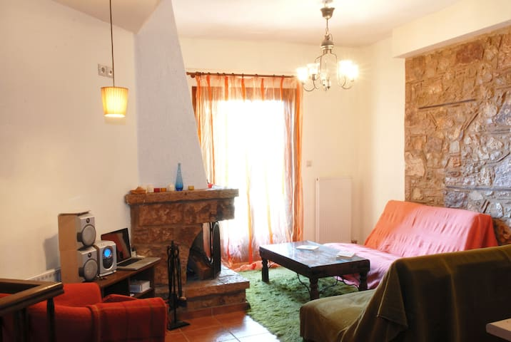 1SG43 Mountain Getaway Home in Arachova - Arachova - Apartmen
