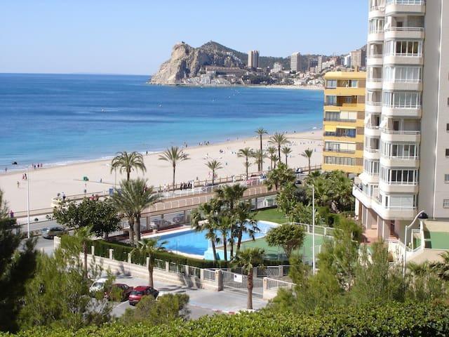 Excelente oportunidad en Benidorm ( Alicante) . - Benidorm - Pis