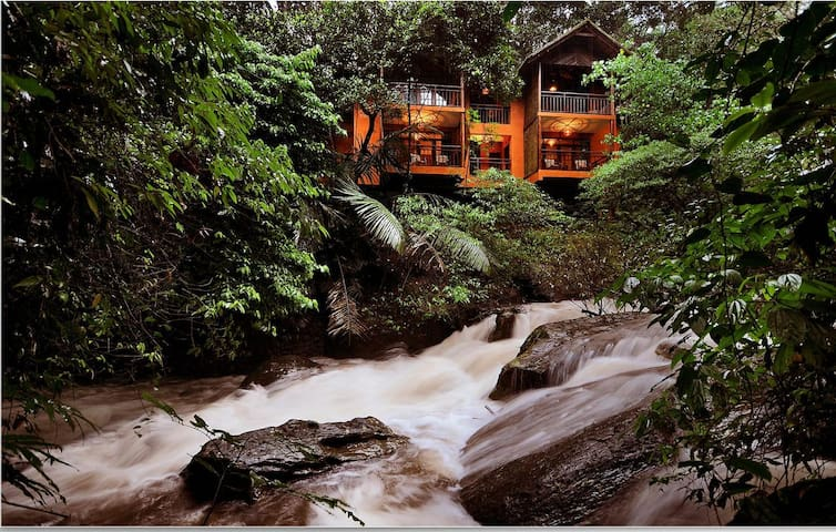 Calm & Quiet Natural Environment Tree House Stay