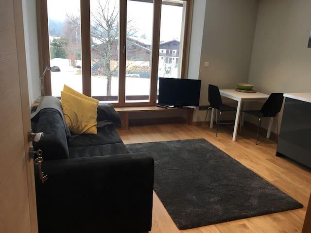 Chamonix Les Praz  Studio - Chamonix-Mont-Blanc - Apartment