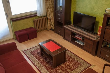 Cozy flat Gliwice walking distace from City center - Gliwice - Apartment