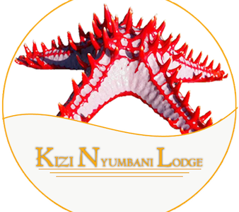 kizi nyumbani lodge - Bed & Breakfast