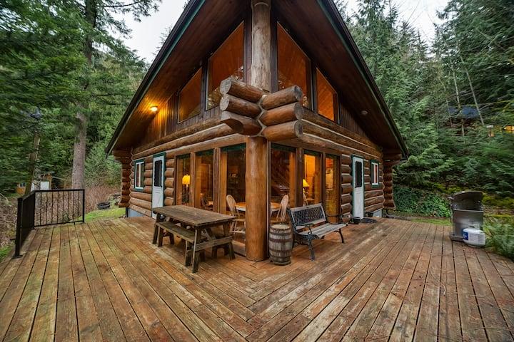 🎣Silver Lake Family Cabin #97-BBQ-PETS OK!🐶