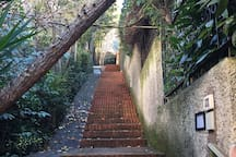 Steps to the property