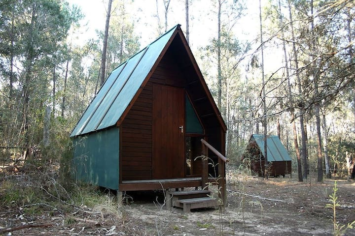 Pachamama Forest Cabin 4