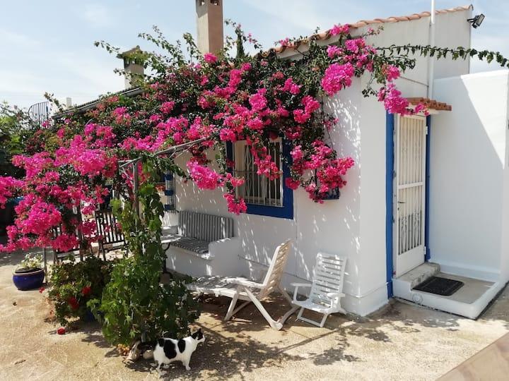 Countryside B&B room near the beach, free parking