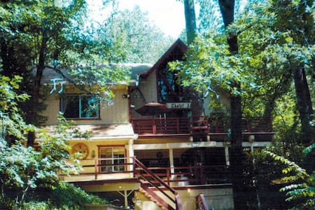 Barefoot Mountain Retreat - Angelus Oaks