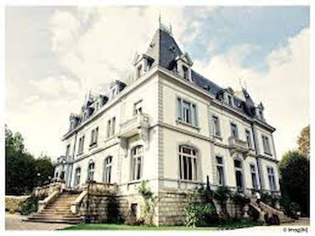 La vie de château - Viry - Slott