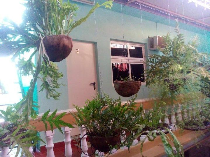 Casa Miriam Habitación 2