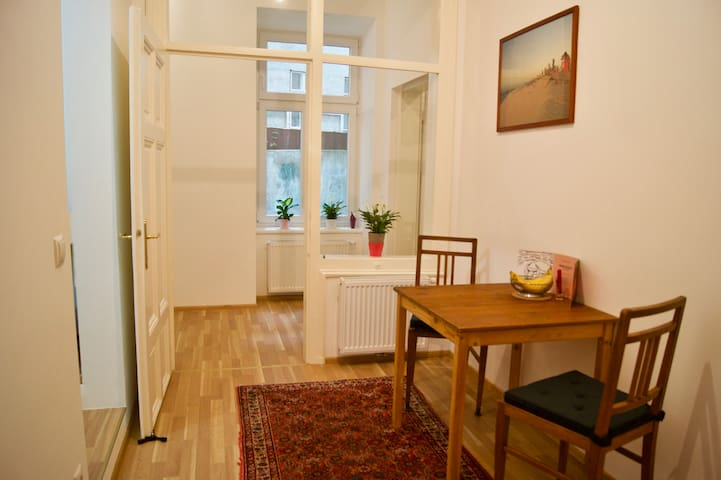 Cozy newly-renovated flat in the Servitenviertel