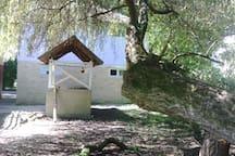 Open kithen in the backyard 1