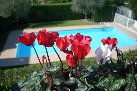 Splendida casa con piscina per vacanze in relax... - Apartment