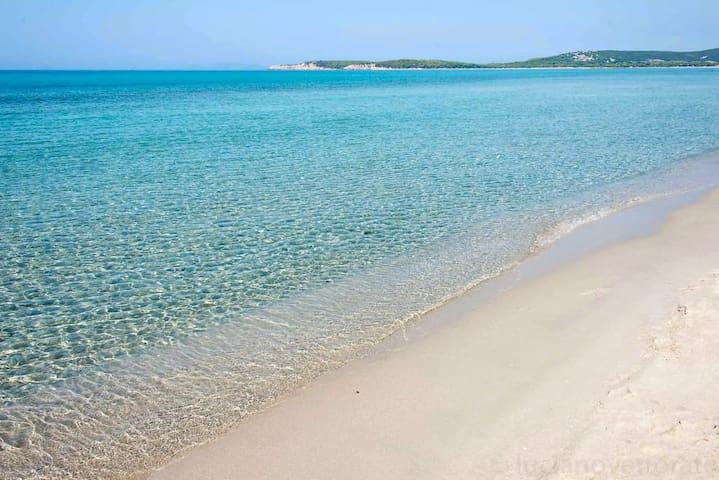 "B&B ""Is Domus Sud nell'incantevole sud Sardegna."