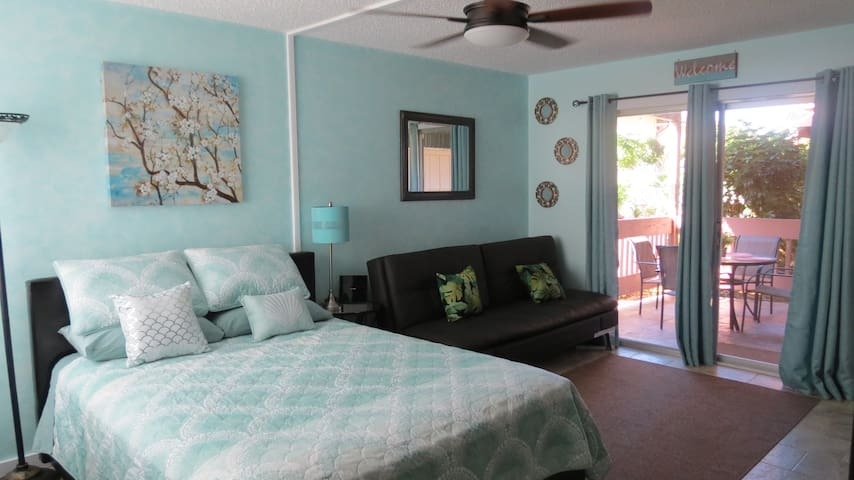 Updated Studio w/ Washer & Dryer, Princeville