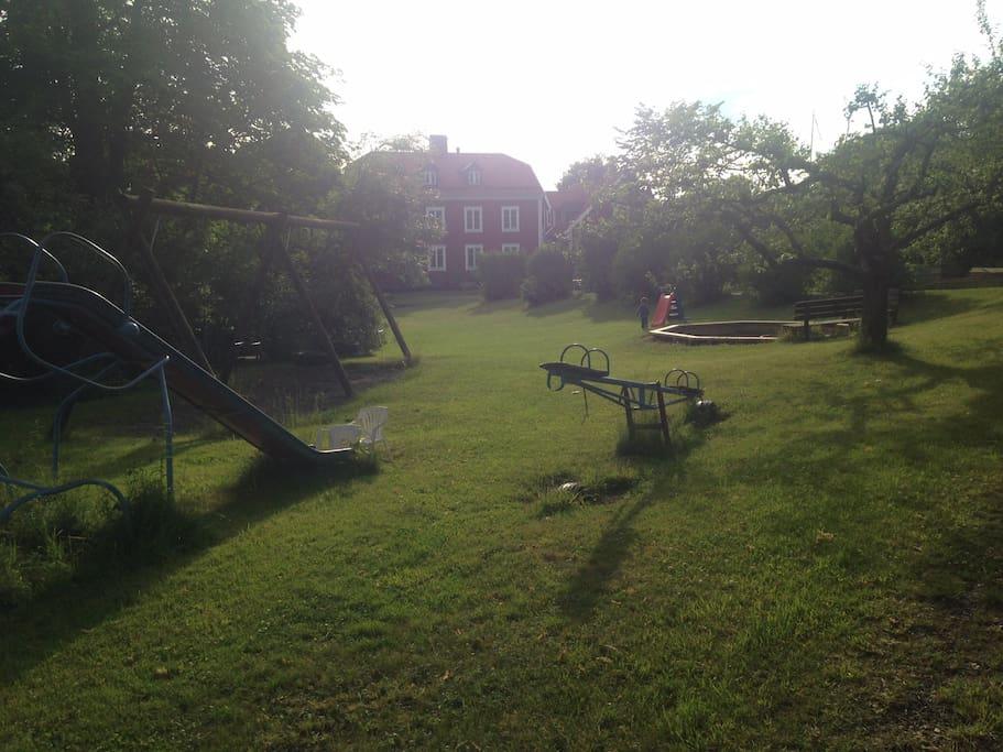 The shared garden