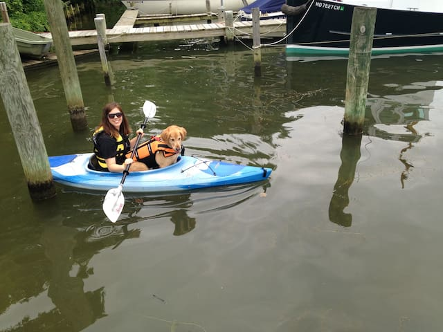 Swim and Kayak. We have two kayaks for your use.